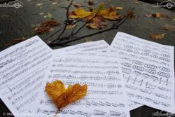 02 - I Love Autumn - Monica Rondoni