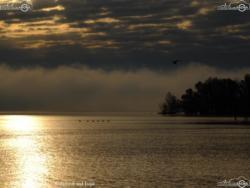 05 - Autunno sul lago - Mario Boschetto