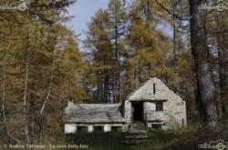 17 - La casa delle fate - Andrea Colombo