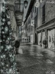 02 - Il Corso - Patrizia Ariola