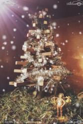 11 - L'albero - Davide Marini